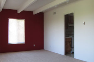 Dark Crimson Accent Wall